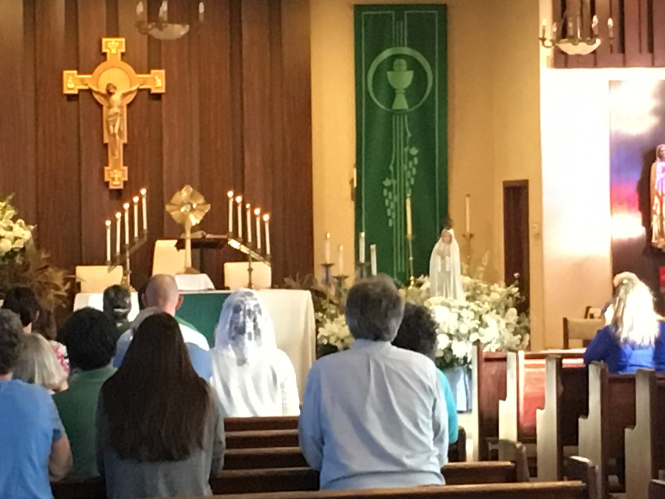 Diocesan Rosary Congress in Steubenville
