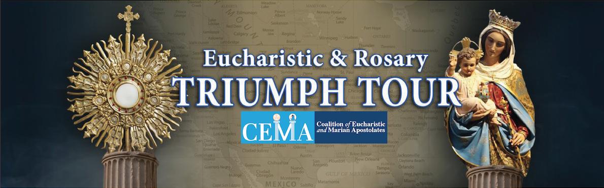 Cema Triumph Banner 2 3